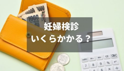 妊婦健診でかかる費用~補助があっても10万円!~